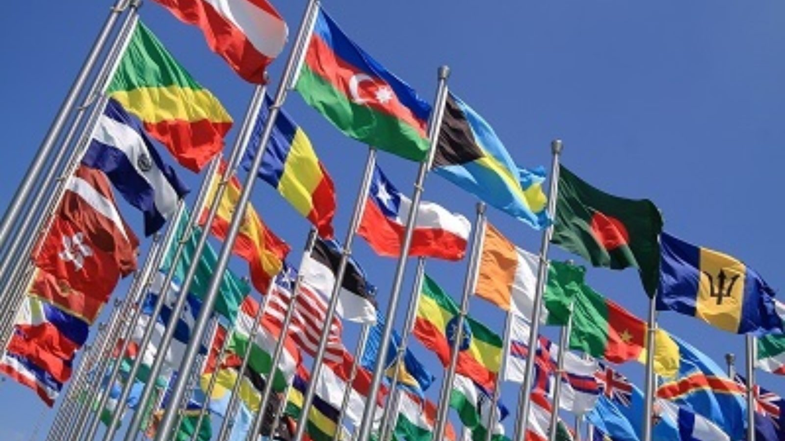 Other ways we can help Overseas opportunities