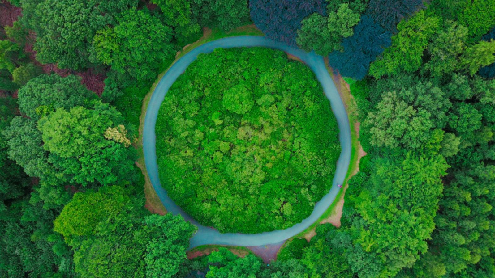 Zero Carbon Business Portal 1