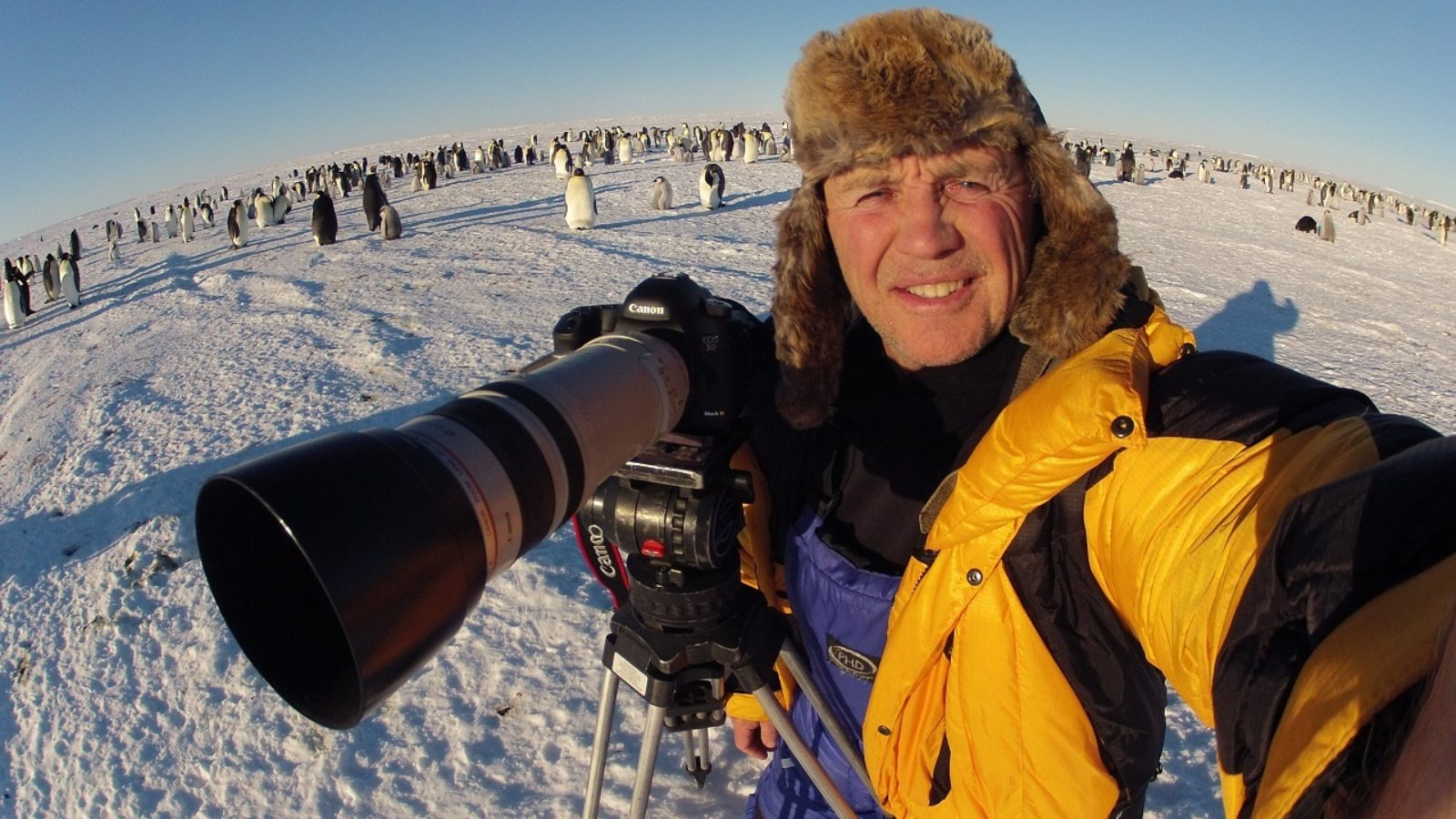 Polar explorer talks about the coolest animals and places that he's filmed