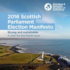 Scottish election manifesto