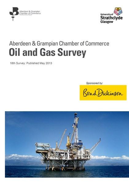 18th Survey: May 2013